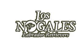 Los Nogales